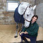 At ahır zeminleri ve altlık kullanımı